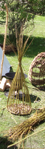 weaving willow basketry